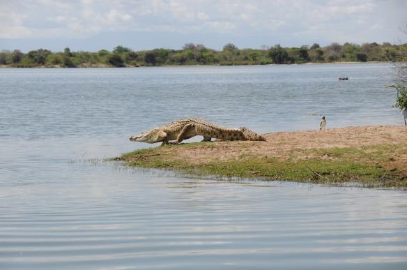 Tanzanie - 241