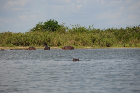 Tanzanie - 243