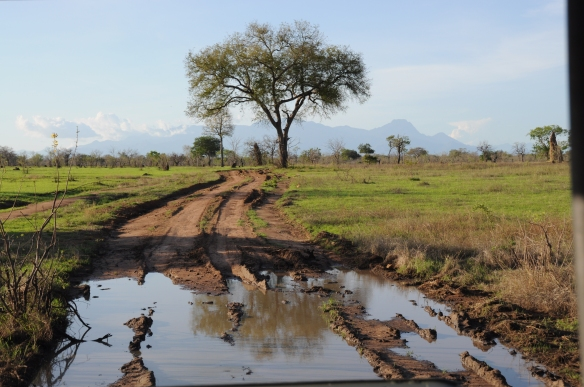 Tanzanie - 294
